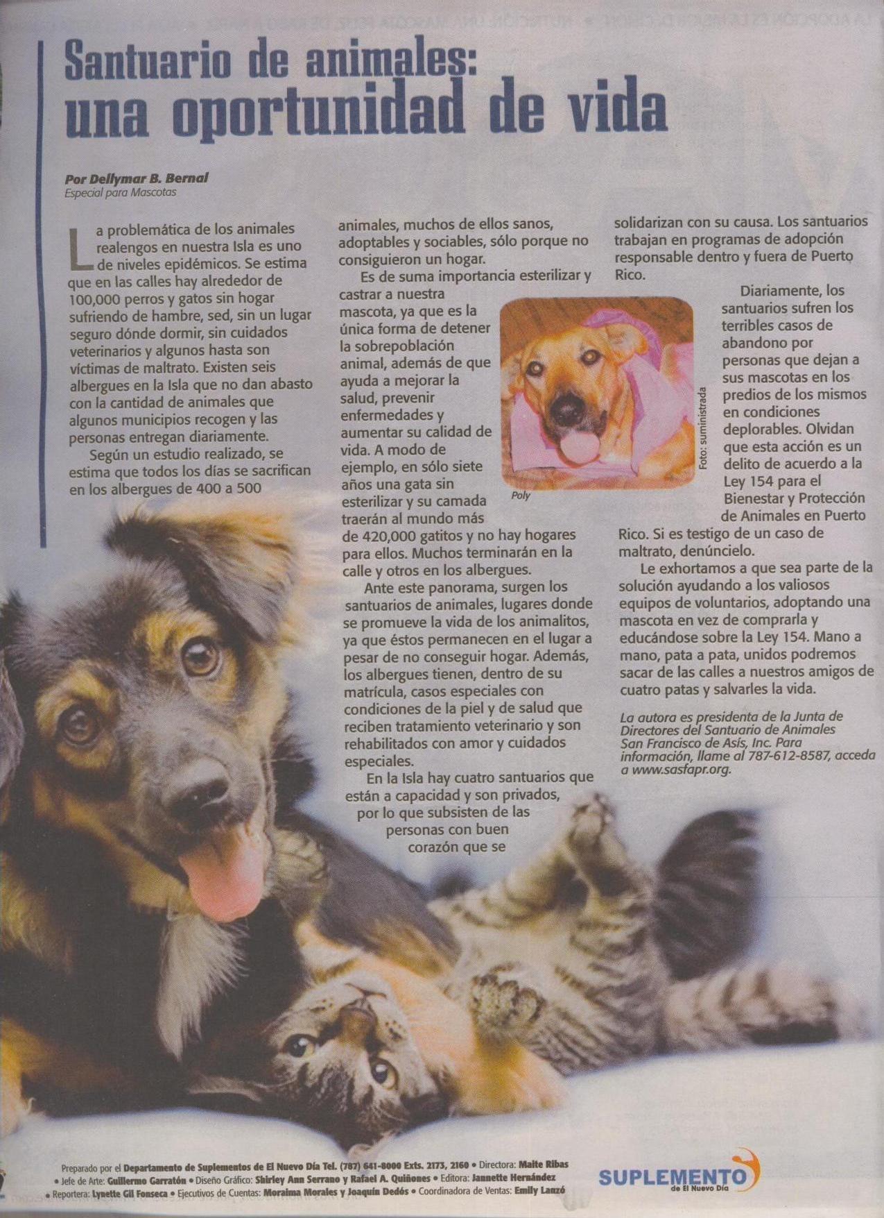 June 2010 santuario de animales san francisco de asis for Actividad de perros en el jardin botanico de caguas