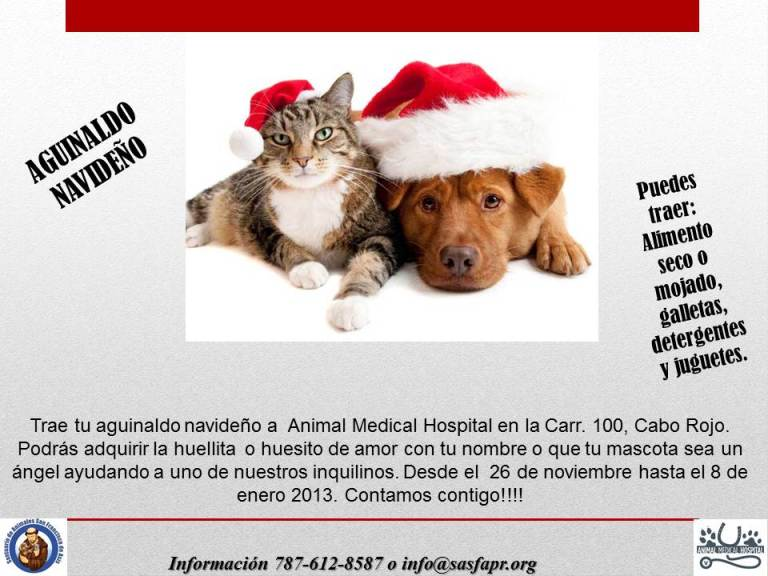 Aguinaldo navideño para SASFAPR en Animal Medical Hospital