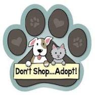 adopt-dont-shop