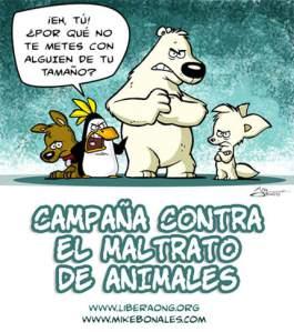 campania_maltrato