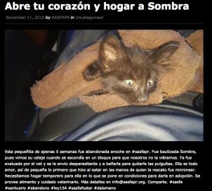 Sombra1